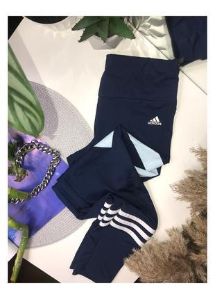 Идеальные синие лосины от adidas