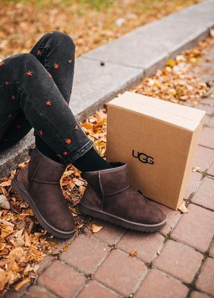 "Угги ugg classic mini ""chocolate"" уги"