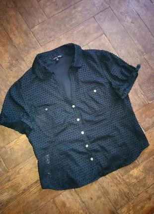 Блузка laura ashley1 фото