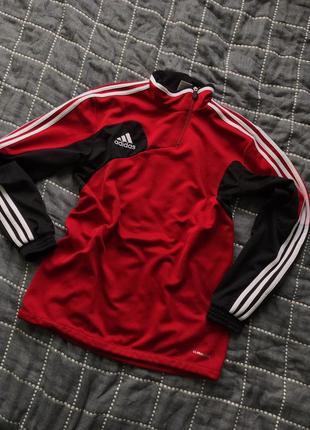 Кофта adidas (м)