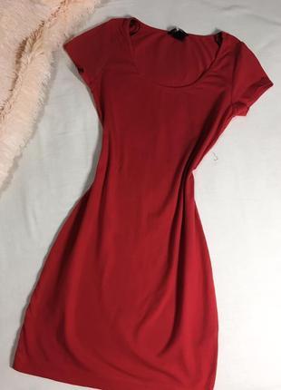Сукня , плаття