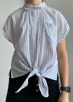 Блуза, рубашка з коротким рукавом, безрукавка, полосата літня сорочка, актуальная рубашка.