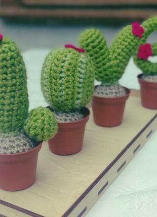 Набор вязаных кактусов love