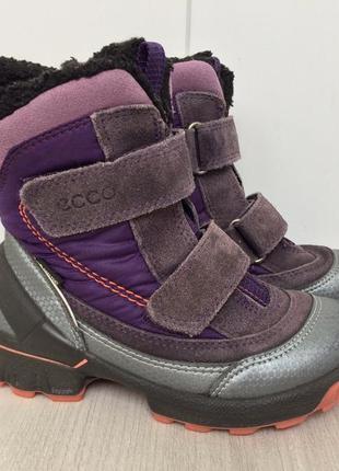 Сапоги ботинки ecco biom с системой gore-tex