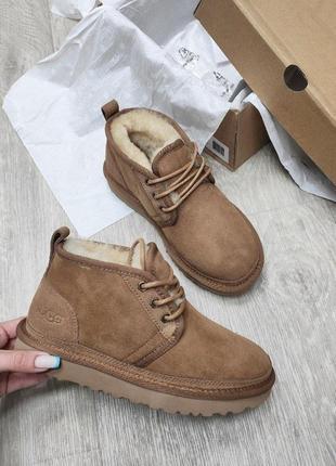 """Угг ботинки рыжие женские ugg neumel boot """"chestnut"""" women"""