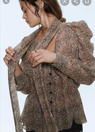 Актуальная блуза zara новая коллекция