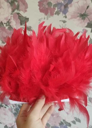 Красные перья индюка на ленте, перьевая тесьма