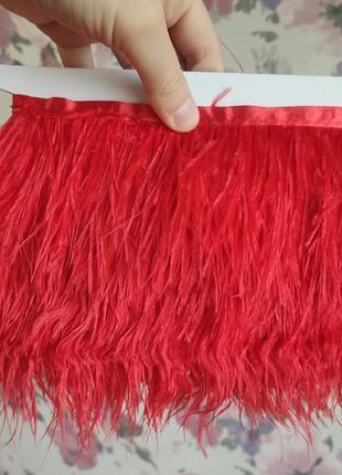 Красные перья страуса на тесьме, лента перьевая