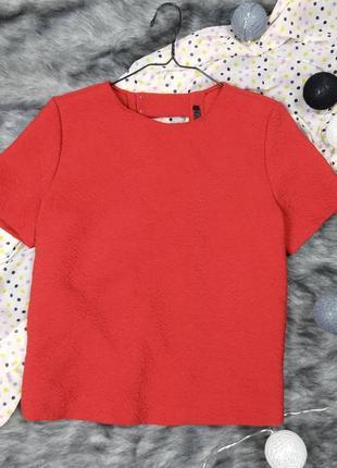 Блуза кофточка с вырезами на спинке zara