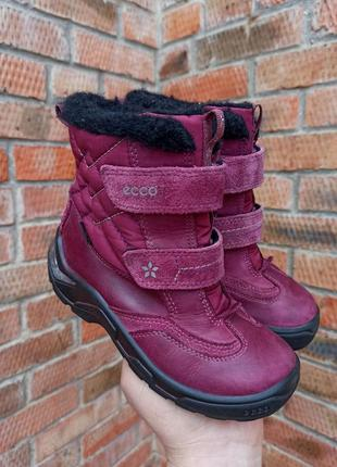 Зимние ботинки ecco light gore-tex размер 30 (19 см.)