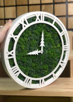 Годинник з стабілізованого моху 🌿