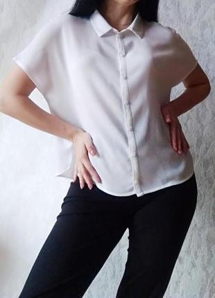 Базовая белая блузка от н&м на пуговицах с коротким рукавом / рубашка белая