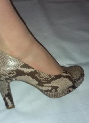 Туфли, натуральная кожа (змея), платформа