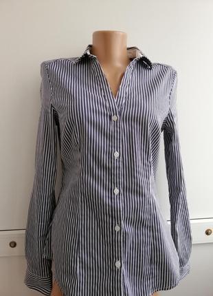 Блуза синяя белая в полосочку