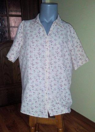 Легкая рубашка ewm большой размер!