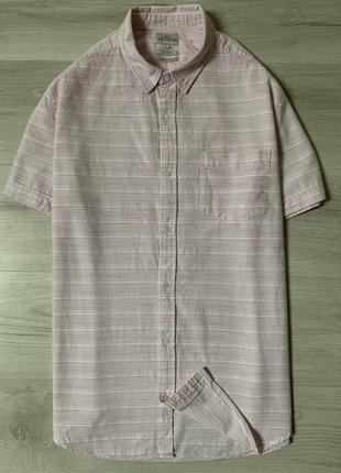 Яскрава чоловіча сорочка від next