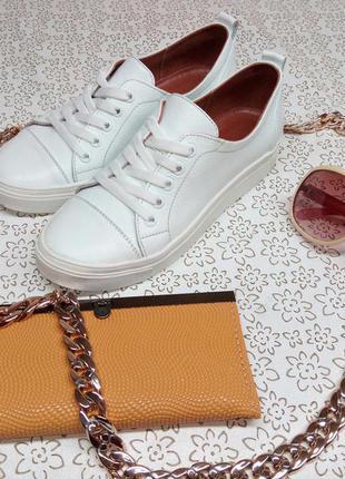 Кеды кожаные белые все размеры разные цвета