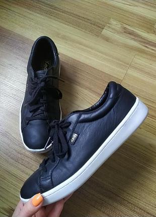 Шкіряні кросівки keds