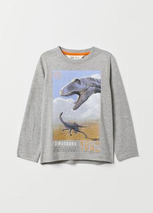 Крутой реглан h&m с динозаврами
