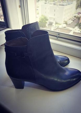 Супер-удобные кожаные темно-синие полусапожки calpierre