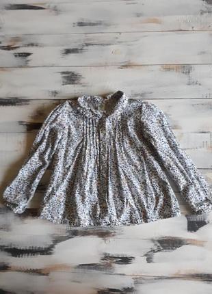Блуза, кофта, рубашка tex baby