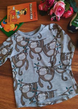 Модный реглан, кофта, футболка next на 1-1,5 года.