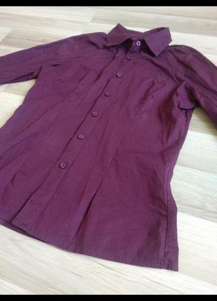 Итальянская рубашка цвета бордо