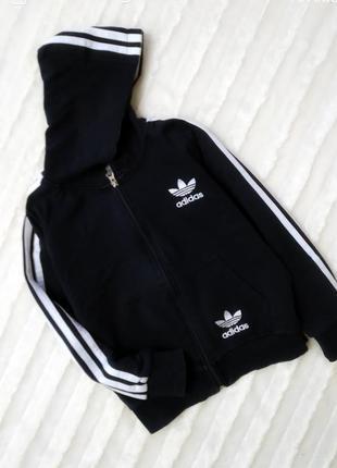 Спортивная кофта adidas с капюшоном