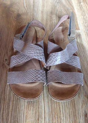 Женские сандали clarks
