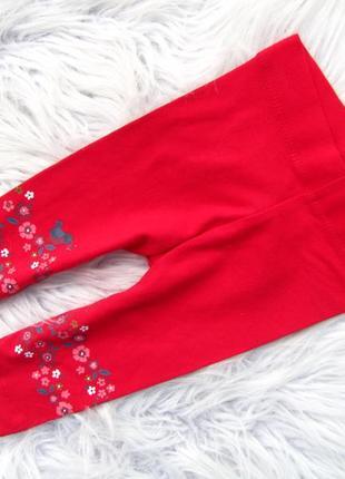 Лосины штаны брюки nutmeg