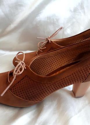 Кожаные туфли campet