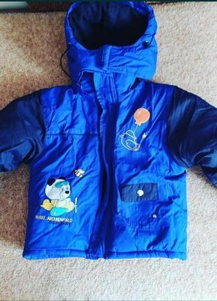 Курточка холодная осень-зима