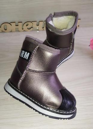 Зимние ботинки сапожки угги