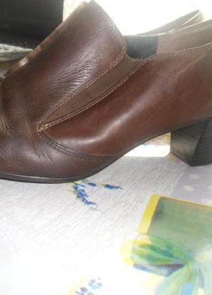 Туфли gabor, германия кожа оригинал /g 7