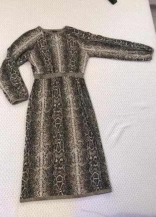 Трендовое платье zara,m 🐍