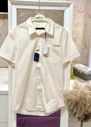 Новая хлопковая рубашка с которыми рукавом calvin klein