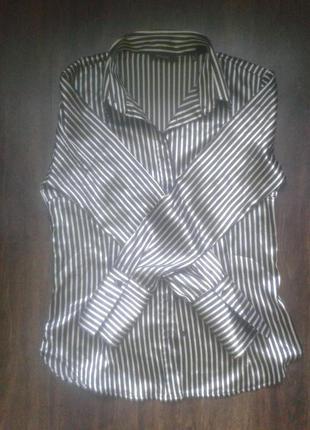 Блуза. блузка. рубашка. тренд. zara