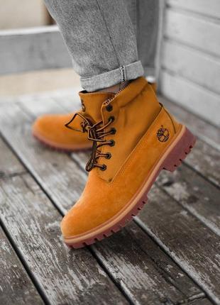 Ботинки демисезонные тimberlad military ginger wm
