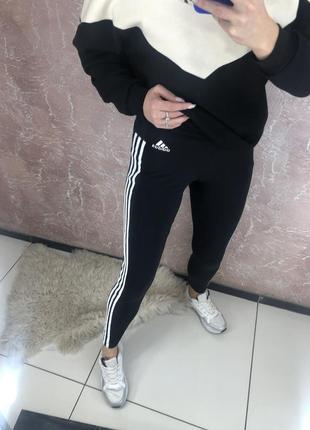 Лосіни adidas