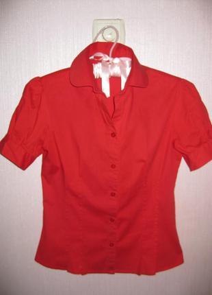 Блуза приталенная под поясок