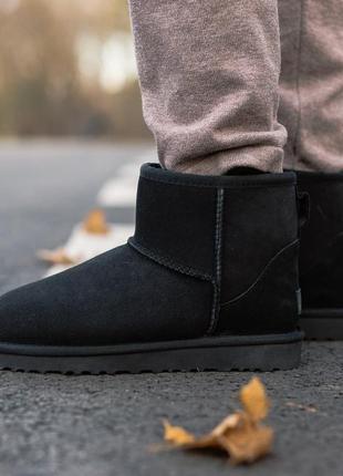 Шикарные сапоги унисекс ugg classic mini ii boot