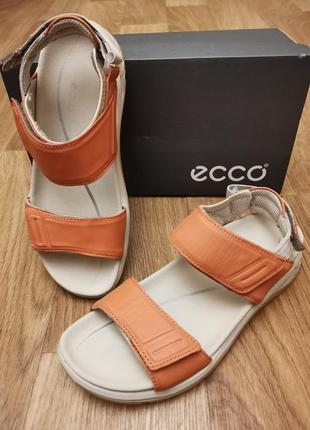 Кожаные босоножки сандали экко ecco x-trinsicw open toe оригинал