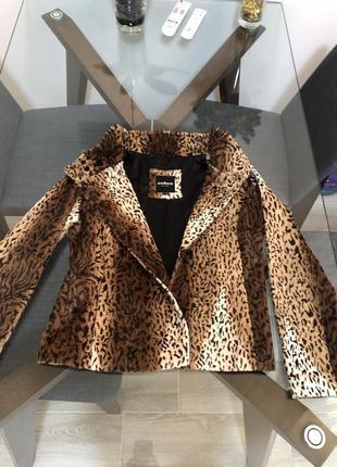 Стильная курточка zebra fashion