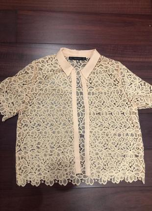 Блузка zara, кружевная блузка