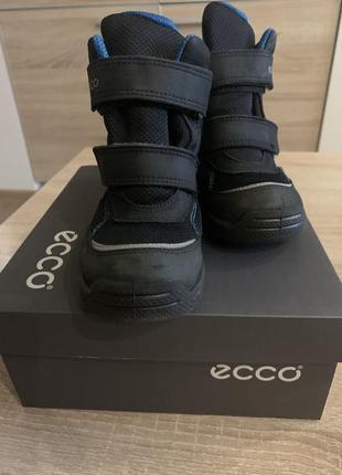 Ботинки ecco, зимние ботинки, ботинки для мальчика