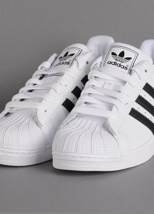Adidas superstar {original}