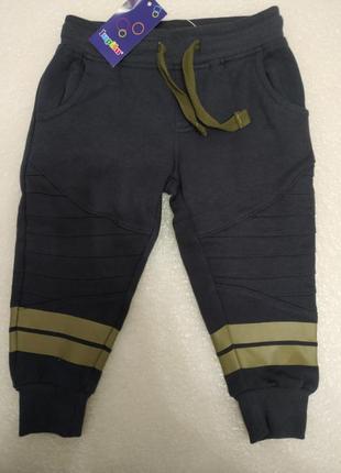 Тёплые спортивные штаны на флисе lupilu