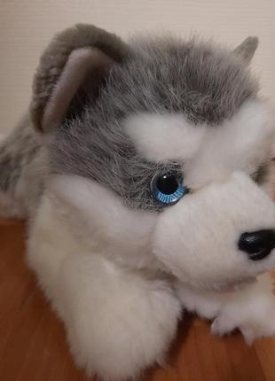 Мягкая игрушка хаски собачка пес собока