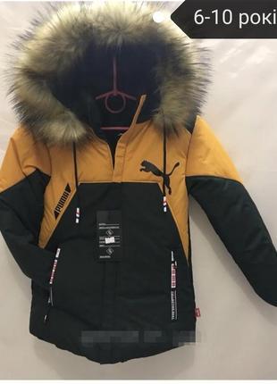 Зимові курточки