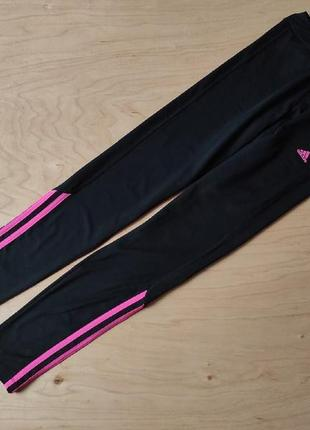 Спортивные лосины  adidas